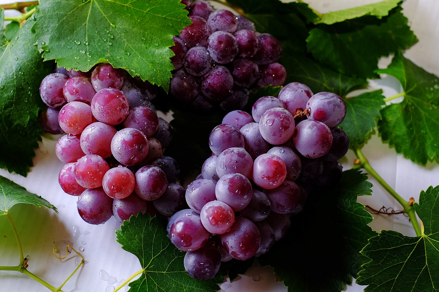 grapes - fruit